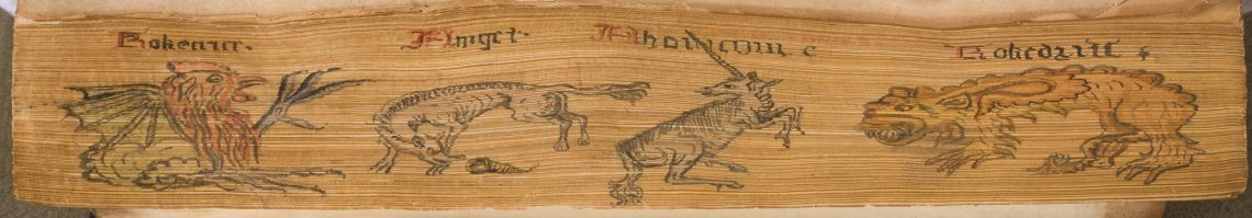 Notes from the Fore-Edge: