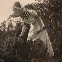 Dorsey, Marian V. (Mary Virginia Dorsey)